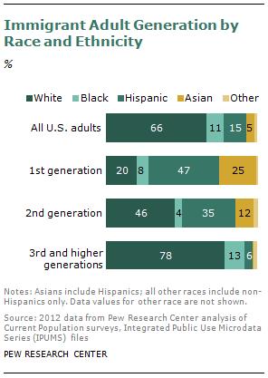 Adult generation