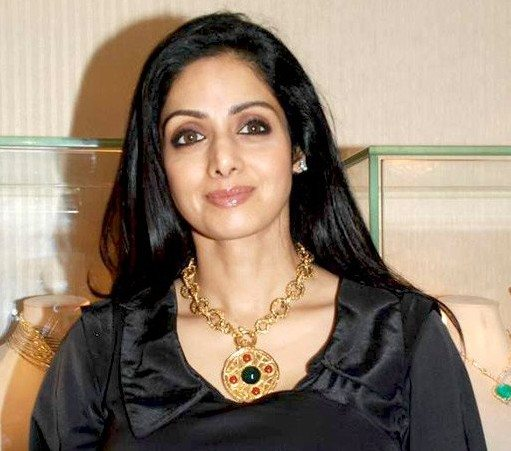 Sridevi coming in roles of a step-mother, a queen, teams up with Gauri Shinde for a social comedy