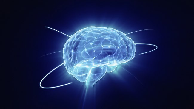Brain improvement foods
