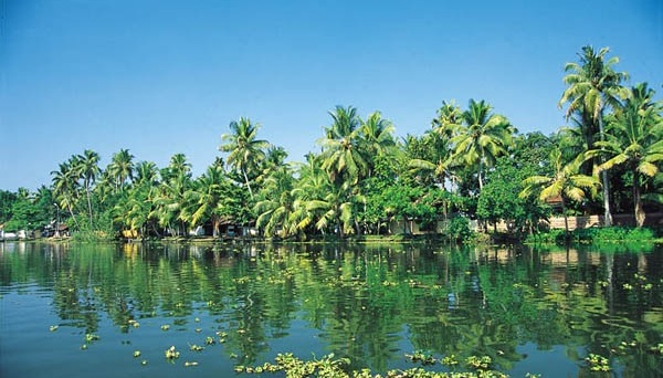 The Digital Age, if implemented aggressively, would prevent the destruction of Kerala's fragile eco systems of air, water and forest, as is happening in China and some parts of the world due to unbridled industrial growth and urbanization. Photo credit: http://www.dic.kerala.gov.in
