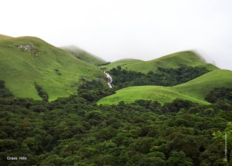Western Ghats (Courtesy of UNESCO)