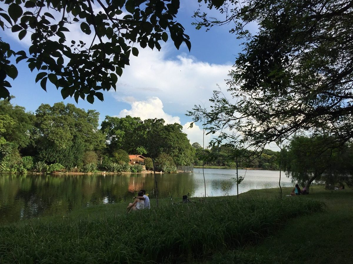 Sao Paulo boasts several large public parks surrounded by beautiful lakes and ponds.